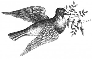 Vintage Pigeon Illustration Clip Art
