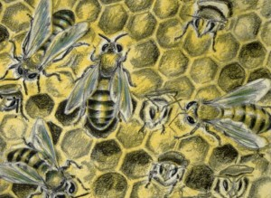 Vintage Illustration Bee Pattern